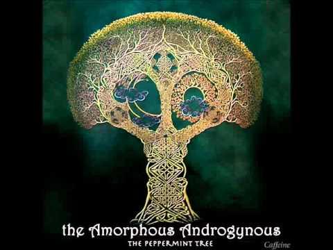Amorphous Androgynous - Rocket Fuel mp3
