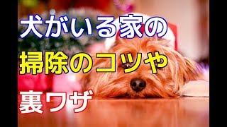チャンネル登録はこちらからも可能です☆→http://ur0.pw/Gf0q 次回もお楽...