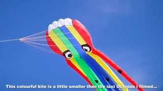 New Rainbow Octopus kite