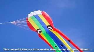New Rainbow Octopus kite