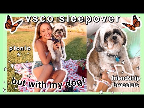 HAVING THE ~ULTIMATE~ SUMMER VSCO SLEEPOVER ~but with my dog~ | being a basic teen girl pt. 2