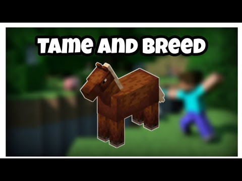 minecraft-:-how-to-tame-and-breed-horses