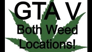 GTA V - Both Weed Stash Locations (Barry