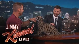 Wild Animals with Dave Salmoni