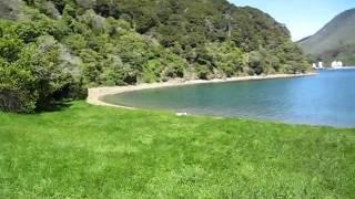 Banheiro em trilha na Nova Zelandia - NZ Picton's track toilet