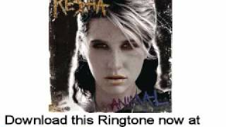 Ke$ha - Album Animal - Dinosaur
