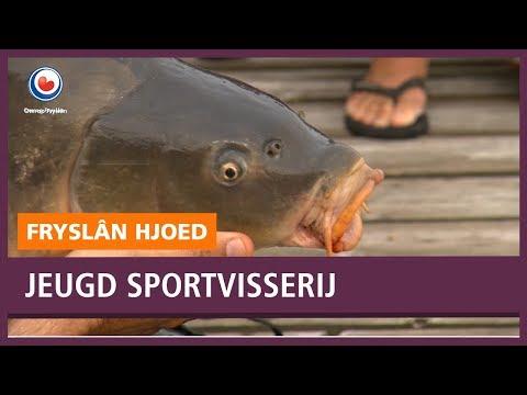 REPO: Vis vangen kunnen ze wel, nu nog de jeugd binnenhengelen.