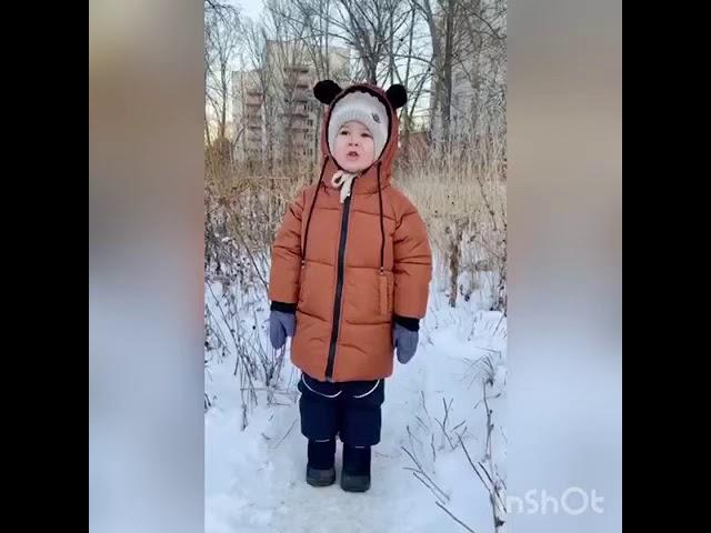 Изображение предпросмотра прочтения – КаримЗакиров читает произведение «Зима» С.А.Есенина