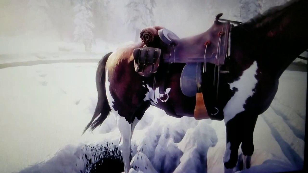 Image result for red dead redemption 2 gameplay horse pooping