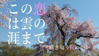 歌唱:麻実れい / 宝塚歌劇団、作詞:植田紳爾、作曲:寺田瀧雄 @ Karao...