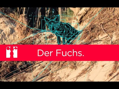 der-fuchs.-|-directors-talk.-#-fewjar-dreht:-lo.-teil-3-(making-of)