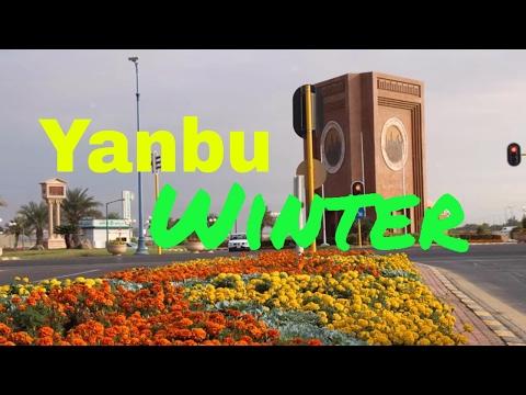 Yanbu in Winter Season Vlog 01 | TipToe Travels