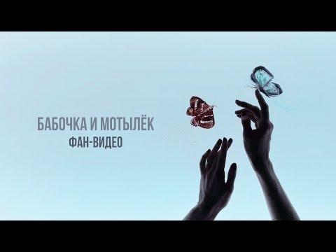 Владимир Пресняков - Бабочка и мотылёк (2 октября 2018)