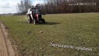 Rozsiewanie nawozów 2019 Ursus 3512 rozsiewacz Motyl
