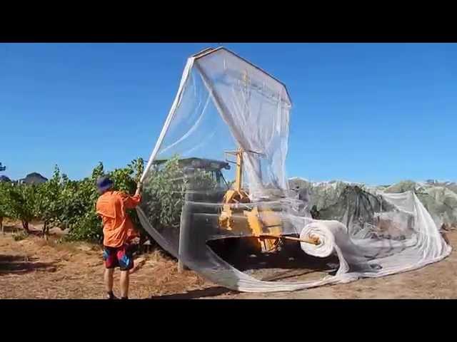 Bird netting at Juniper Margaret River, Western Australia 2015