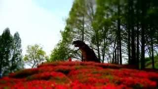 タイムラプス 2014.5.6 茶臼山恐竜公園