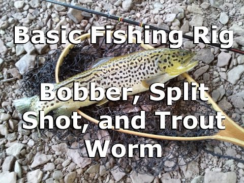 Basic Fishing Rig -Bobber, Split Shot, and Trout Worm