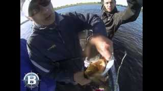Рыбалка с катером Волжанка 51 Фиш