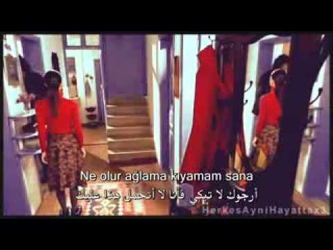 Toygar-Işıklı-Sardunyalar-(مترجمة-للعربية-)