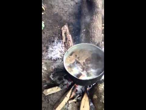 Sopa de macaco uma delicia - 4 2
