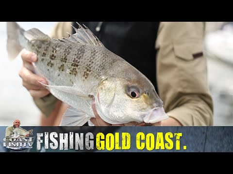 GOLD COAST Canal Fishing With Nathan Huggett | CoastfishTV Ep3