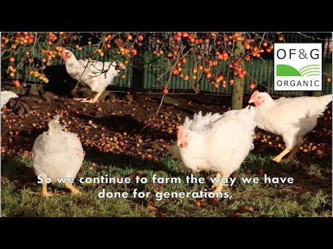 Organically farmed poultry for Moy Park to the OF&G organic standards