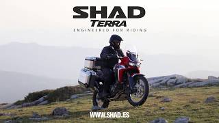 New Shad Terra