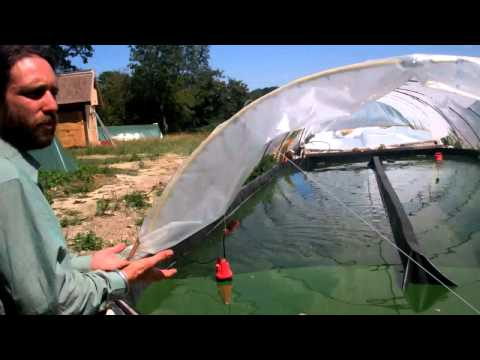 An Integrated Spirulina Algae Microfarm in France