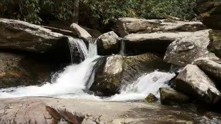 Video Exploring Goforth Creek download MP3, 3GP, MP4, WEBM, AVI, FLV Desember 2017