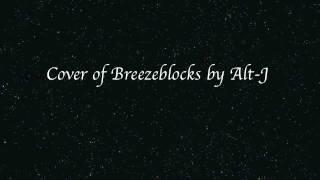 Alt-J - Breezeblocks Thumbnail