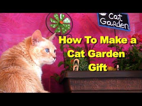 cat garden. how to make a small cat garden diy