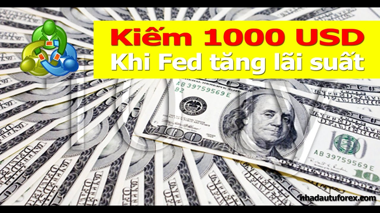 Earn 1000 USD with believe the Fed to raise interest rates - Forex