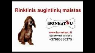 www.bone4you.lt - FITMIN Mini Maintenance šunų maistas