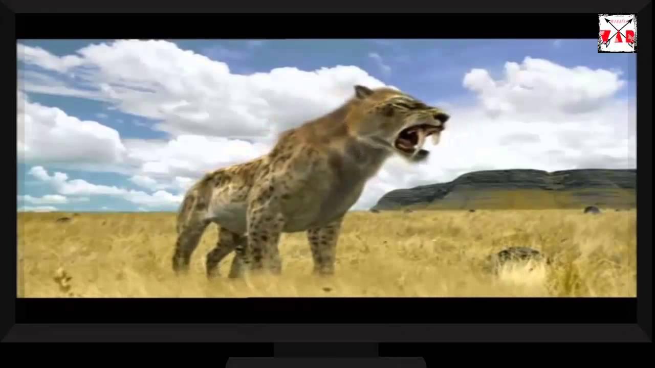 [battle of monster] American lion vs smilodon - YouTube