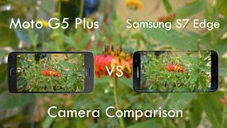 Moto G5 Plus Vs Galaxy S7 Edge Camera Comparison