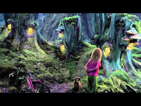 MagusModus - Magic Fairy Tale @Beit Shemesh forest