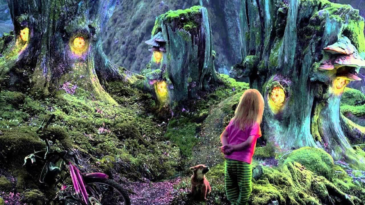 Max Shemesh: Magic Fairy Tale @Beit Shemesh Forest