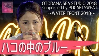 2018年9月11日 OTODAMA SEA STUDIO(神奈川) OTODAMA SEA STUDIO 2018 su...