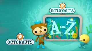 Octonauts: Creatures A to Z (US Version)