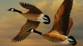 "Нина Матвиенко. ""Ой летіли дикі гуси"" .wmv"
