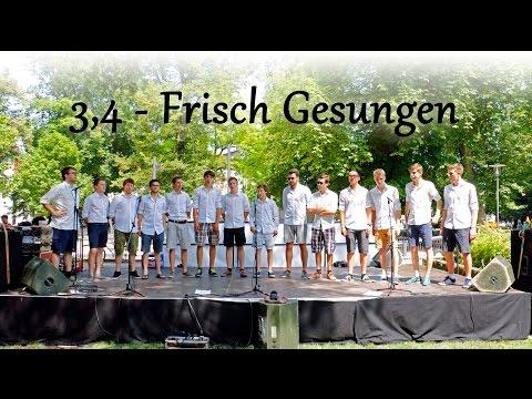 Die Choristen - Frisch Gesungen (Karlsplatzfest 04.07.15)