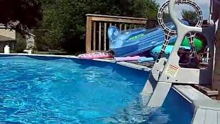 Dachshund Jumping In Pool