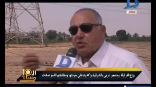 العاشرة مساء| محافظة الشرقية تدافع عن محصول الفراولة من الحرب الأمريكية