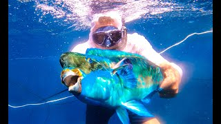 SPEARFISHING on ULTRA-REMOTE Island {Catch Clean Cook} Pagan, CNMI