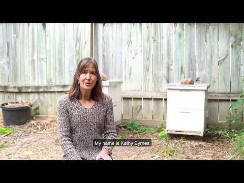 Kathy Burns Endorsement