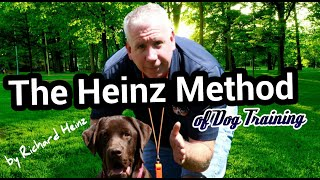 Aggressive Bernese Mountain Dog Tries To Kill Dog Trainer!