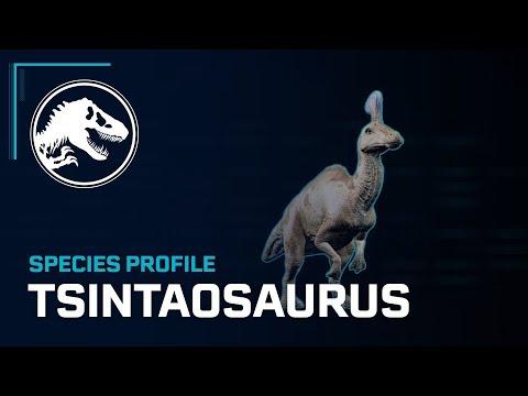 Species Profile - Tsintaosaurus