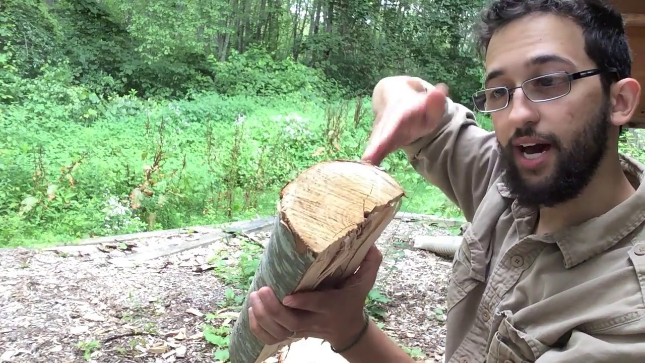 How to Split Green Wood for Spoons and Other Projects