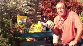 How to Grow Tomatoes : How to Grow Tomatoes Organically