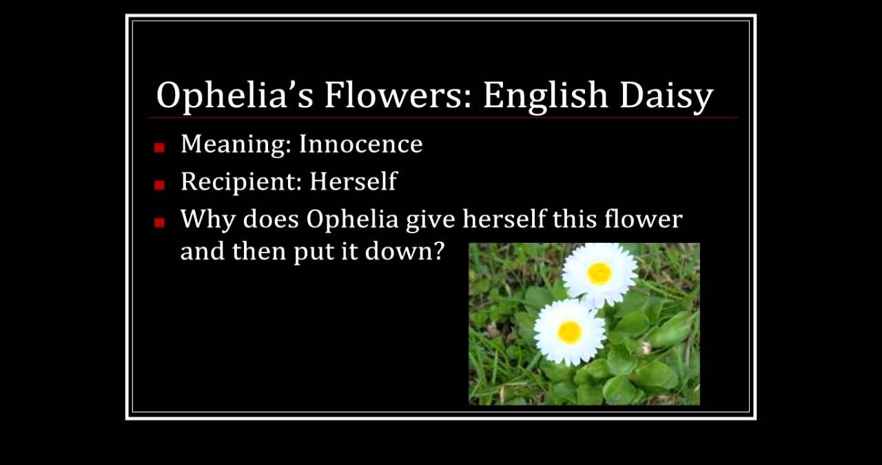 Ophelias flowers youtube ophelias flowers izmirmasajfo
